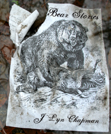 Bear Stories by J'Lyn Chapman